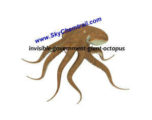 invisible-government-giant-octopus-300x236